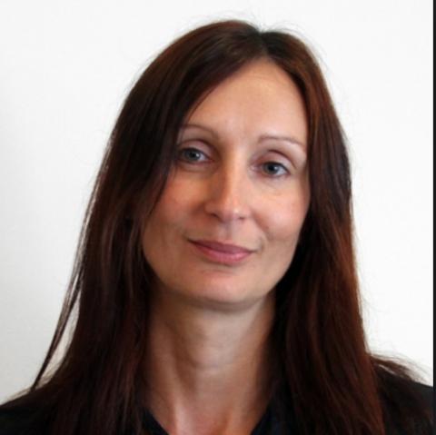 Sonja Nelson new CFO at NanKwest (Photo: Business Wire)