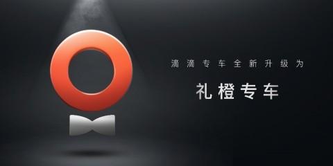 DiDi Premier new logo