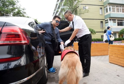 DiDi Premier provides specialist services for the visually-impaired who travel with a guide dog