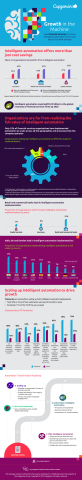 Capgemini Automation in FS Infographic (Photo: Business Wire)