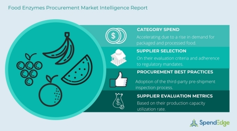 Food Enzymes Procurement Report (Graphic: Business Wire)
