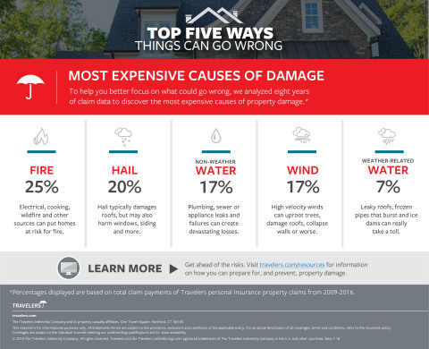 The Most Expensive Causes of Damage  (Graphic: Business Wire)