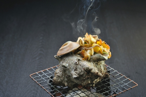 Shimoda Prince Hotel: Special Class Turban Shell Meat (Photo: Business Wire)