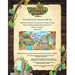 Learn more about the stats of Dollywood's new Wildwood Grove.