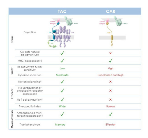 Benefits of Co-opting Natural T Cell Receptors (Graphic: Business Wire)