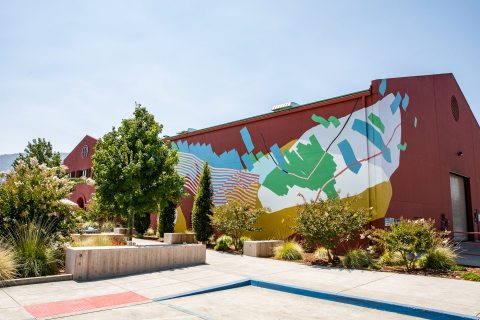 Provenance Vineyards x Heather Day Mural (Photo: Grace Sager)