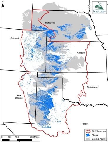 More than 80,000 playas overlay the Ogallala Aquifer. Playas are a primary source of groundwater rec ...