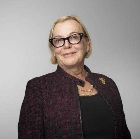 Caroline Watteeuw Carlisle, New Relic Board Member (Photo: Business Wire)