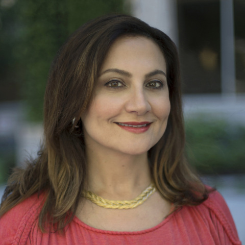 Mojgan Lefebvre, Executive Vice President and Chief Information Officer, Travelers (Photo: Business  ...