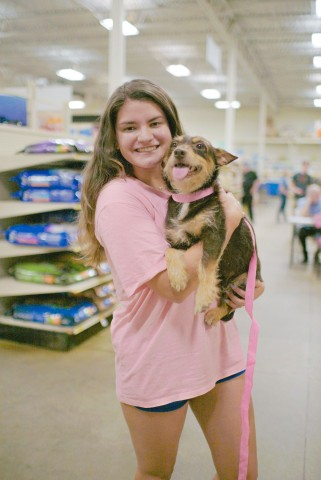 Butterfinger, a two-year old chocolate and peanut-butter colored pooch from Haile's Angels pet rescue was one of the lucky pets who was adopted from the PetSmart store in Gainesville, Fla. by new pet parent, Emily Gleim. (Photo: Business Wire)