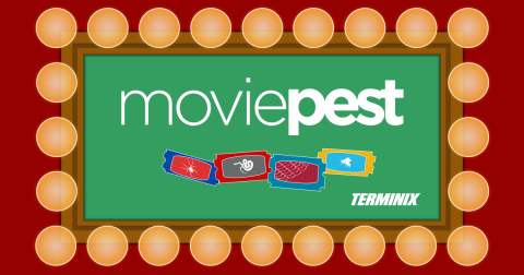 MoviePest will allow customers the chance to leave the pests found in their homes to Terminix's tech ...