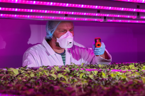 STC Research Facility enables entrepreneurs and growers to optimise crops before breaking ground on their own vertical farming operations. (Photo: Business Wire)