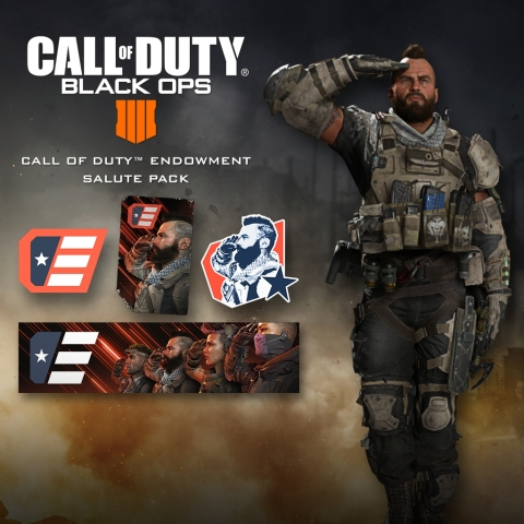 The new Salute Pack is available now. One hundred percent of proceeds will go directly to the Call of Duty Endowment's mission to help veterans in the U.S. and U.K. secure quality careers when they leave military service. (Graphic: Business Wire)