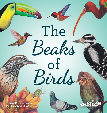 The Beaks of Birds (Photo: Business Wire)