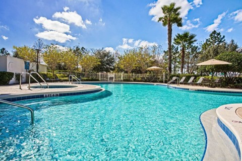 Palm trees shade the swimming pool deck. (Photo: Business Wire)