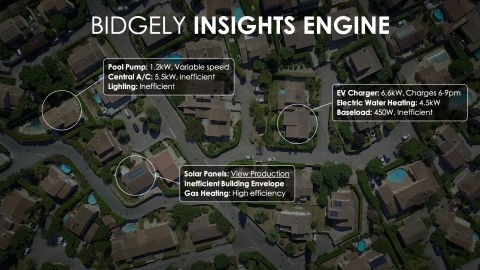 The Bidgely Insights Engine enables utilities to analyze homes based on appliance-level usage across all DSM programs to achieve highest adoption and lowest cost, such as how much to invest in pool pump rebate programs vs. an A/C tune-up program for a given population. (Graphic: Business Wire)
