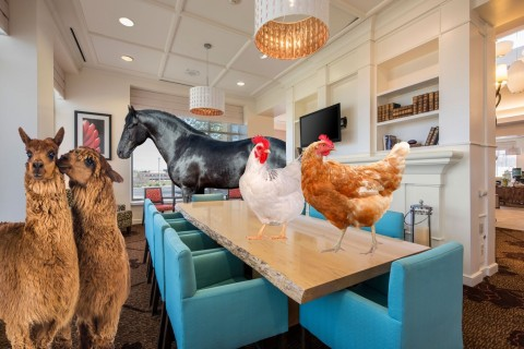 Up with the chickens? Enjoy your breakfast at a farmhouse-style table in the lobby. (Photo: Business Wire)