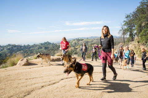 Maria Menounos and Rally Health led a 1.5-mile walk in LA's Griffith Park with adoptable dogs from the Westside German Shepherd Rescue. (Photo: Rally Health)