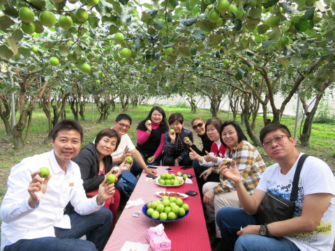 Tourists enjoy jujubes in Taiwan. Tourists can take fruit as a point of departure for diving deeper into local culture and features in Taiwan as they experience the pinnacle of seasonal flavor over the shortest distance between farm and table. (Photo: Business Wire)