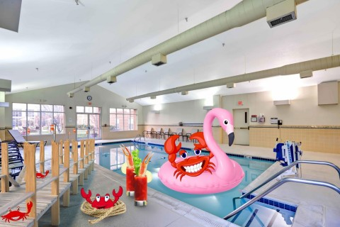 Pack a float! The hotel's indoor pool can be your own boardwalk empire. (Photo: Business Wire)