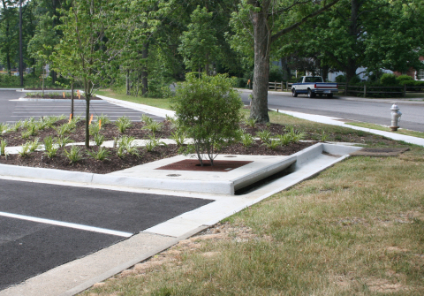 Filterra® Bioretention System from Imbrium® Systems is verified in accordance with ISO 14034 Environmental Management - Environmental Technology Verification (ETV). (Photo: Business Wire)