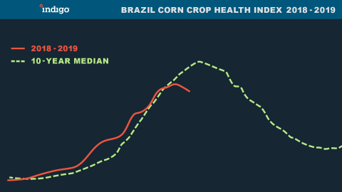 Brazil Corn Crop Health Index 2018 - 2019 (Graphic: Business Wire)