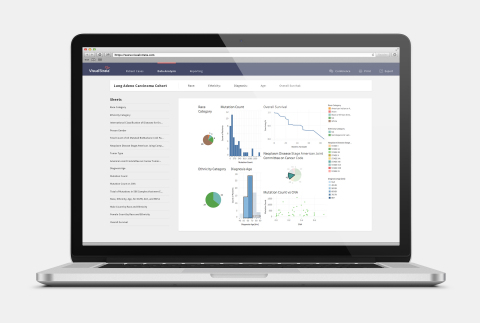 Leverage VisualStrata's analytics capabilities to document and report quality of care metrics and for transforming data into actionable insights. (Photo: Business Wire)