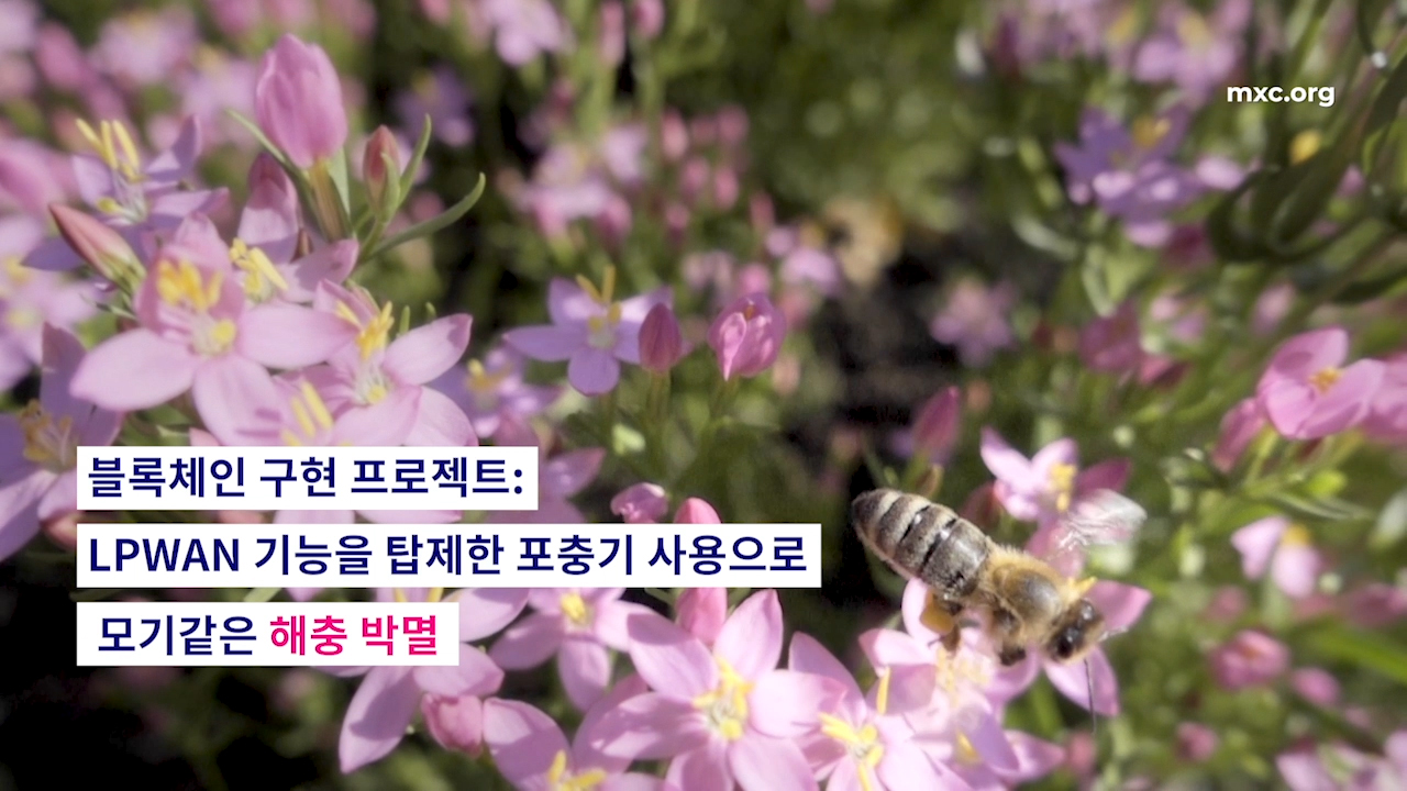 MXC, 한국에 최초로 통합 블록체인 솔루션 제공