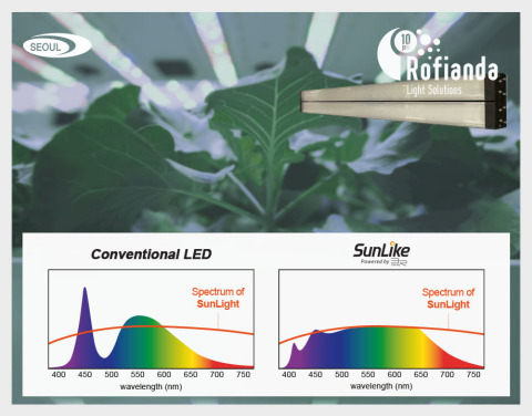 Seoul Semiconductor's SunLike Series Natural Spectrum LEDs (Graphic: Business Wire)