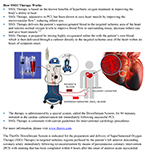 SuperSaturated Oxygen (SSO2) Therapy Fact Sheet