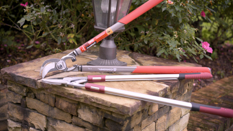 Loppers are typically the best tool for pruning branches of more than 1/2-inch (12.7mm) in diameter. (Photo: Business Wire)