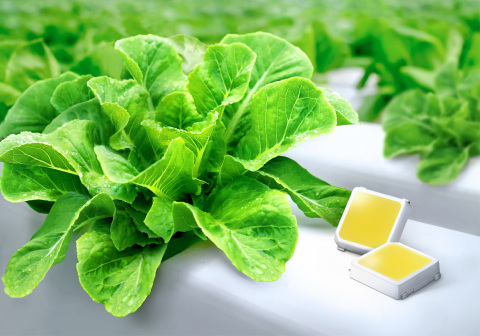 Samsung LED enhanced LM301H for indoor farming with highest photon efficacy (Photo: Business Wire)