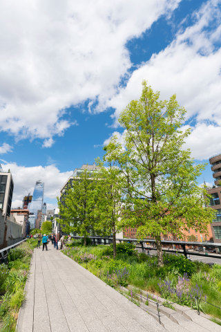 The High Line, the historic public park built on a freight rail line above the streets on Manhattan' ...