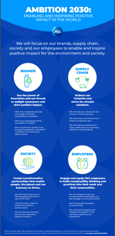 P&G's Ambition 2030 focuses on our brands, supply chain, society and our employees to enable and inspire positive impact for the environment and society. (Graphic: Business Wire)