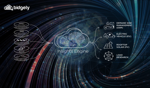 With the Insights Engine leveraged across a utility, the combined insights derived from applying AI to customer data enables multiple stakeholders to directly address challenges around four key areas: demand-side management (DSM), electric vehicles (EVs), solar PV and load research. (Graphic: Business Wire)