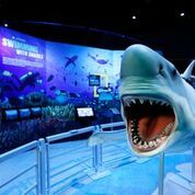 The National Geographic Presents: Earth Explorers exhibit at the new Graceland Exhibition Center. (Photo: Business Wire)