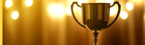 Rimini Street's Nancy Lyskawa Wins Female Executive of the Year (Photo: Business Wire)