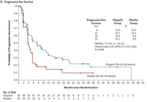 Lynparza Olaparib First Line Maintenance Therapy Nearly Doubled The Time Without Disease Progression Or Death In Phase 3 Polo Trial For Patients With Germline Brca Mutated Metastatic Pancreatic Cancer Biospace