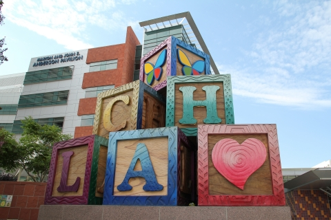Children's Hospital Los Angeles was ranked the No. 1 children's hospital on the west coast and No. 5 in the country by the 2019-20 U.S. News & World Report Best Children's Hospital survey. (Photo: Business Wire)