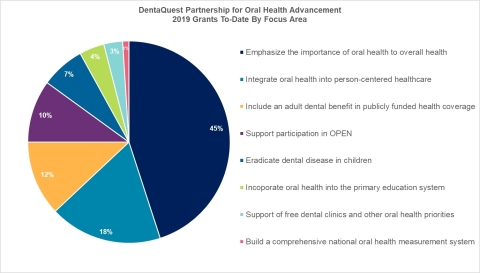 DentaQuest Partnership for Oral Health Advancement - 2019 Grants To-Date By Focus Area (Graphic: Business Wire)