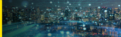 Rimini Street Announces Global Availability of Application Management Services for SAP Enterprise Software (Graphic: Business Wire)