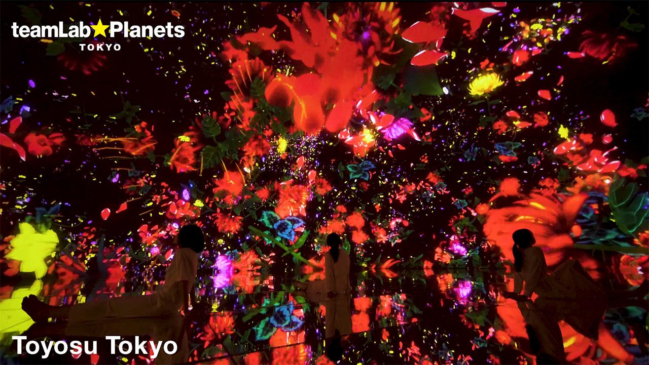 teamLab, Exhibition view of teamLab Planets, 2018, Toyosu, Tokyo © teamLab