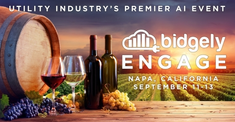 Engage 2019 held September 11-13 in Napa, Calif., is utility AI leader Bidgely's third annual event that brings together utilities, AI experts and tech leaders to discuss applied AI for the energy industry, as well as to enjoy networking in California's legendary wine country.(Photo: Business Wire)