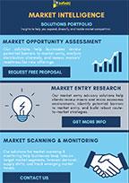 Infiniti's market intelligence solutions portfolio.