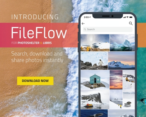 Search, download and share photos instantly with FileFlow. (Photo: Business Wire)