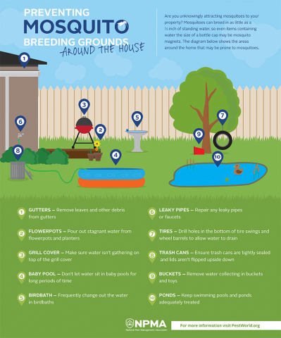 How to prevent mosquito breeding grounds from forming on your property. (Photo: Business Wire)