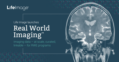 Life Image launches Real World Imaging™ (Graphic: Business Wire)
