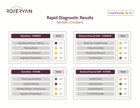 Is your startup ready to scale and sustain growth? The RoseRyan Rapid Diagnostic for Emerging Growth lets you know, by scoring key finance and operational areas on a scale of 1 to 5. Startups receive a scorecard like the one above at the end of the dialogue with the firm. (Graphic: Business Wire)