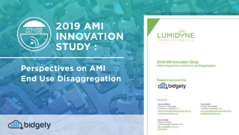 "Lumidyne Consulting's ""2019 AMI Innovation Study: Utility Perspectives on AMI End Use Disaggregation,"" sponsored by Bidgely, analyzed responses from 19 experts at 11 utilities in North America to reveal how utilities are creating value from their investments in the advanced metering infrastructure (AMI) and customer data analytics. (Graphic: Business Wire)"