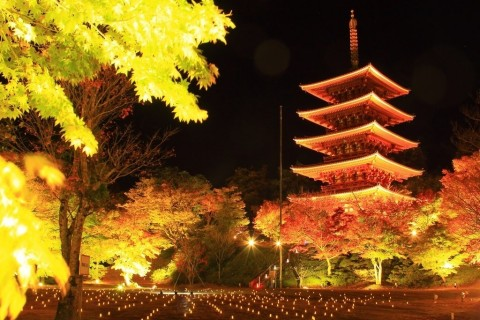 Nariaiji Temple (Photo: Business Wire)